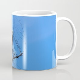 Clear Sight (Bald Eagle) Coffee Mug