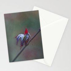 Ready for take off Stationery Cards