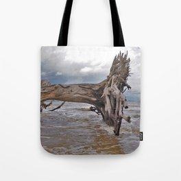 Drift Wood Beach 7 Tote Bag