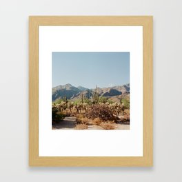 Sabino Canyon Framed Art Print