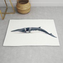 Baby Minke whale Rug