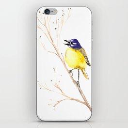 Yellow Wagtail iPhone Skin