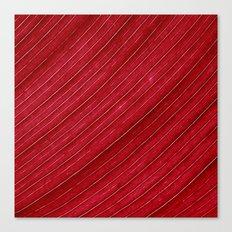 red leaf I Canvas Print