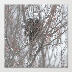 Home amoung the berries  Canvas Print