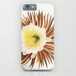 The Night–Blowing Cereus illustration iPhone Case