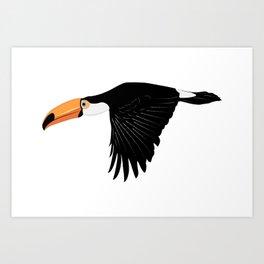 Flying toucan Art Print