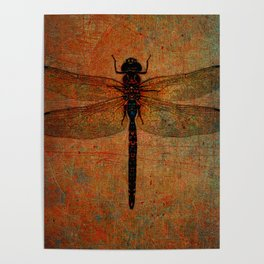 Dragonfly On Orange and Green Background Poster