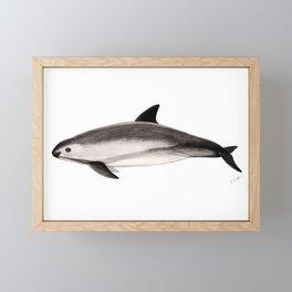 Vaquita Framed Mini Art Print