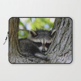 Baby Raccoon Asleep in a Tree Laptop Sleeve