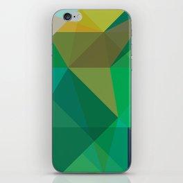 Minimal/Maximal 5 iPhone Skin