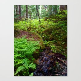 Hiking in Whistler-Blackcomb Canvas Print