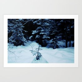Mid-Winter Art Print