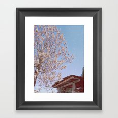 Urban Spring/Summer Framed Art Print