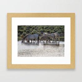 Reaching the Waterhole Framed Art Print