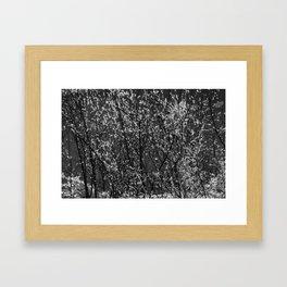 Icy Days NO8 Framed Art Print