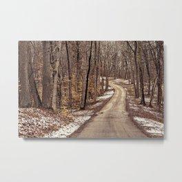 road through the woods Metal Print