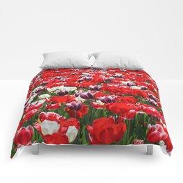 Tulip Sensation Comforters