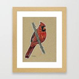 State Bird Series: Kentucky - Northern Cardinal Framed Art Print