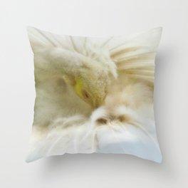 Beautiful White Peacock Throw Pillow
