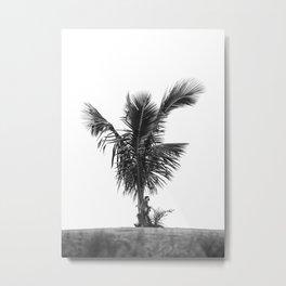 Monkey on Palm Tree Metal Print