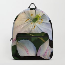 Jazz Berry Jam Backpack