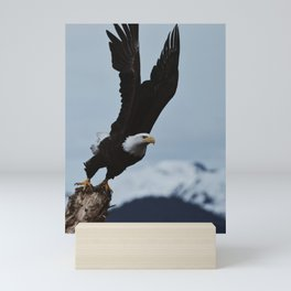 Alaskan Bald Eagle Mini Art Print