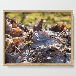 Fall Foliage Serving Tray
