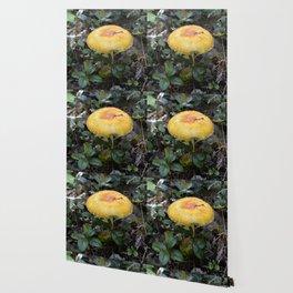 Mushroom Bitten Wallpaper