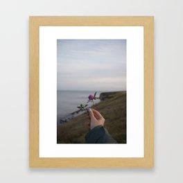 Flower in Seaham, United Kingdom Framed Art Print