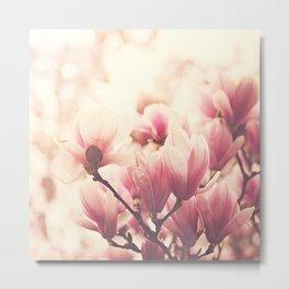 Morning Magnolias Metal Print