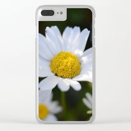 White Daisy Flowers - close up (macro) Clear iPhone Case