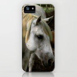A Gentle Soul iPhone Case