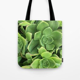 Succulents #1 Tote Bag