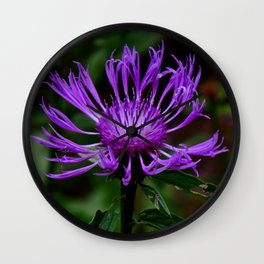 Summer Knapweed Wall Clock