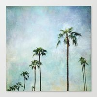 palm trees Canvas Prints featuring Palm trees by Sylvia Cook Photography