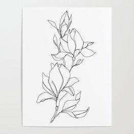 Botanical illustration line drawing - Magnolia Poster