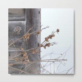barn wood in winter Metal Print