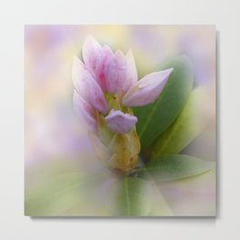 the beauty of a summerday -37- Metal Print