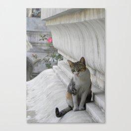 Untitled 4. Canvas Print