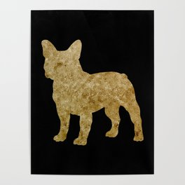 Golden Frenchie on black Poster