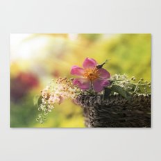 Lovely flowerbouquet in a special light- Rose Roses Canvas Print