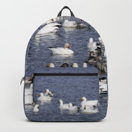 Snow Geese at Centennial Beach Backpack