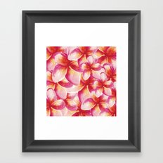 Plumeria Floral Watercolor Framed Art Print