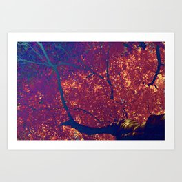 Arboreal Vessels - Pulmonary Art Print