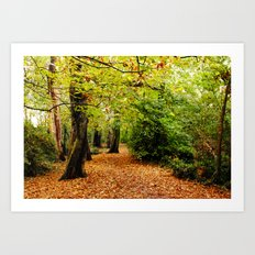 Autumn in the Forest Art Print