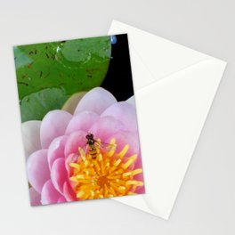 Butinage. Stationery Cards