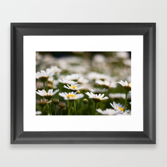 Daisy Field Framed Art Print