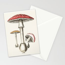 The Real Mushroom Stationery Cards