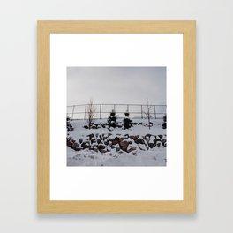 minnesota winter Framed Art Print