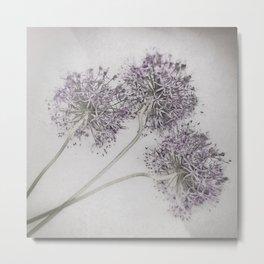 Allum ii - Pale Vintage Botanicals Metal Print
